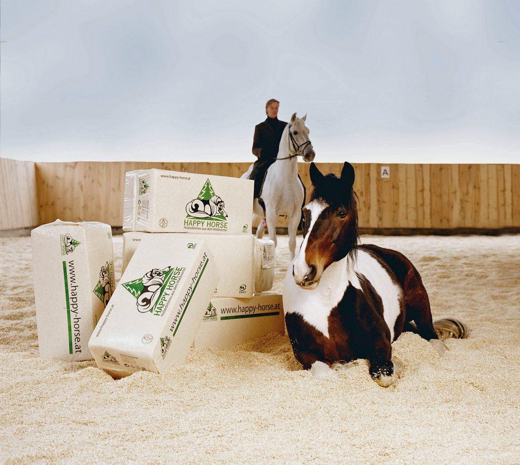 Pferd mit altem Happy Horse Ballen